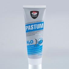 """Паста уплотнительная """"PASTUM H2О"""" 250г. туба"""